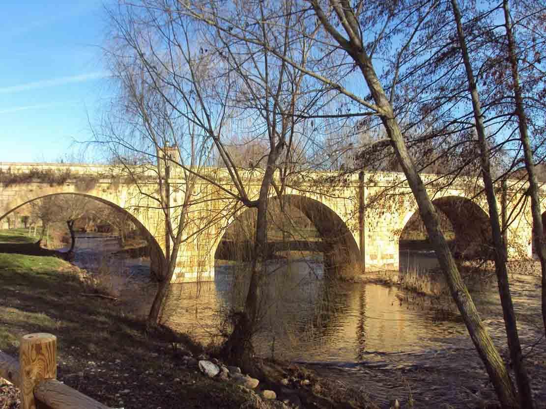 puente arlanza