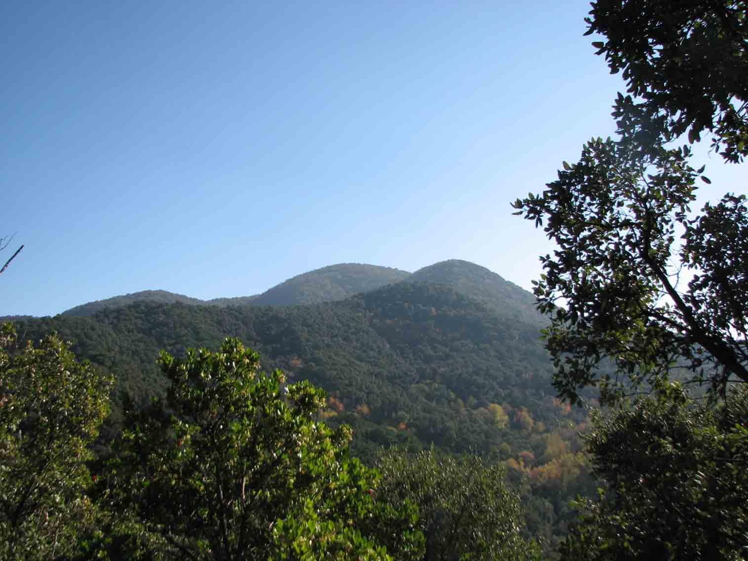 El Parque del Montnegre i el Corredor