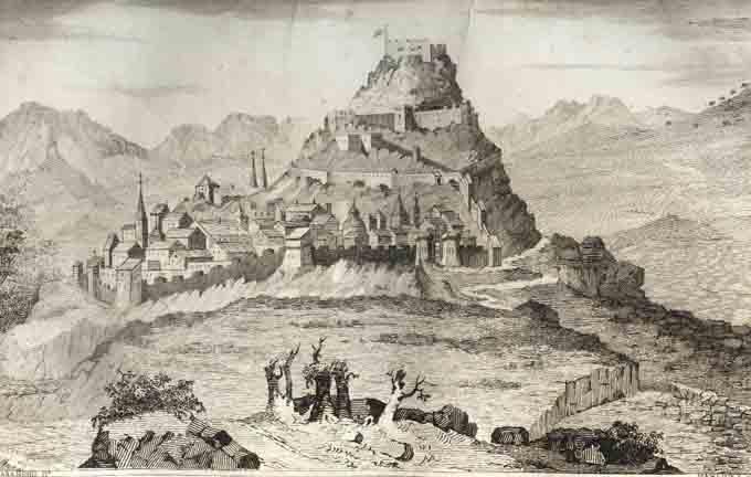 Morella-1845