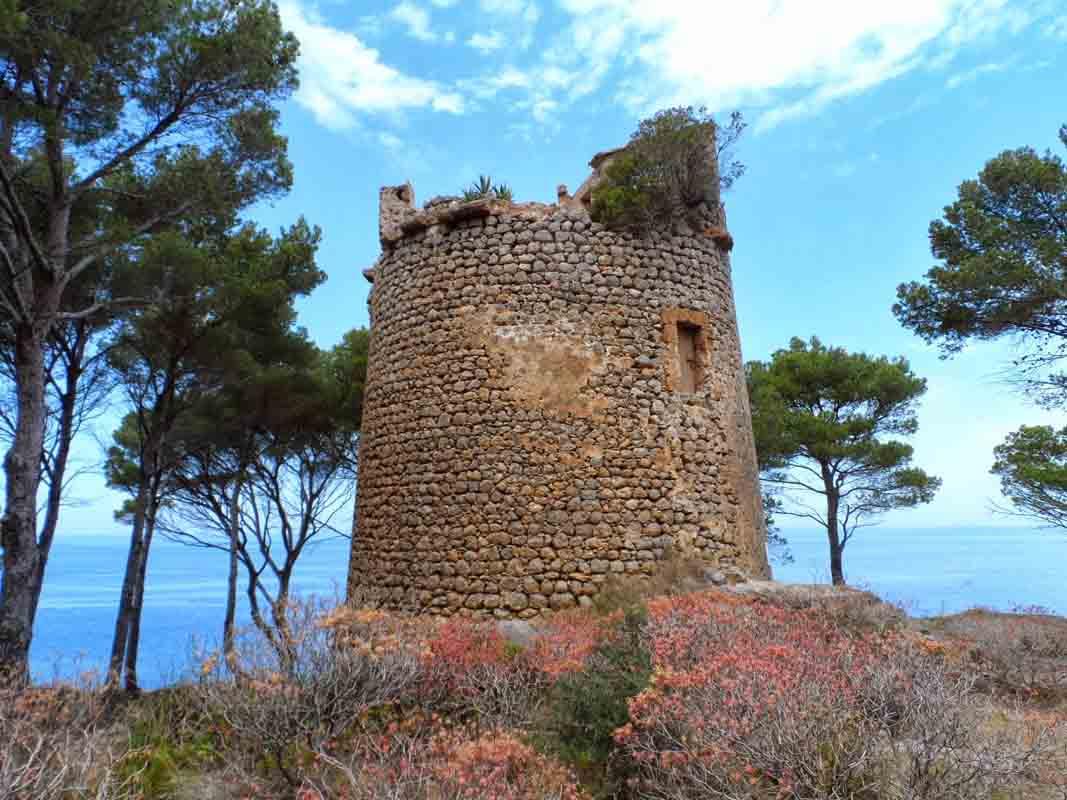 Torre-de-Sa-Pedrissa