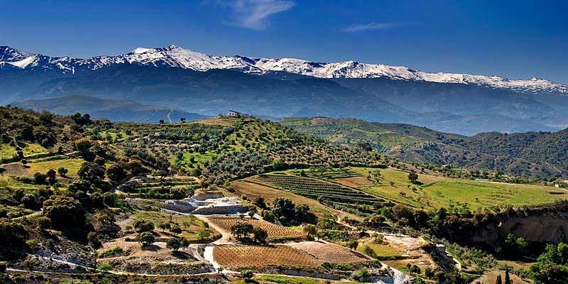 Sierra-Nevada-8