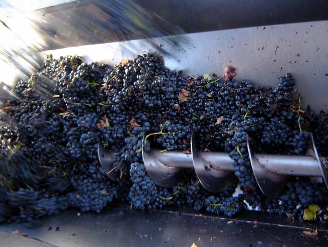 el-vino-español-estrujado