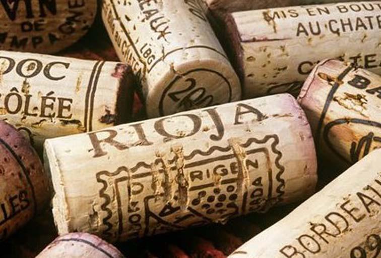 el-vino-español-rioja
