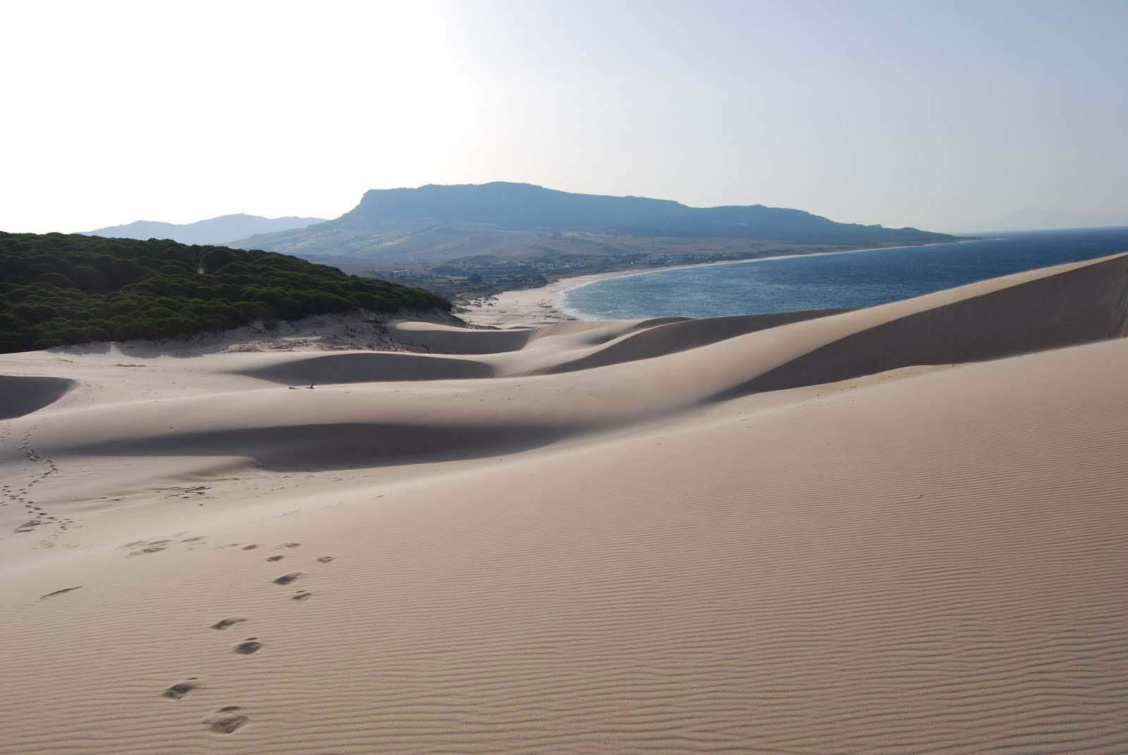 playa-de-bolonia-duna-3