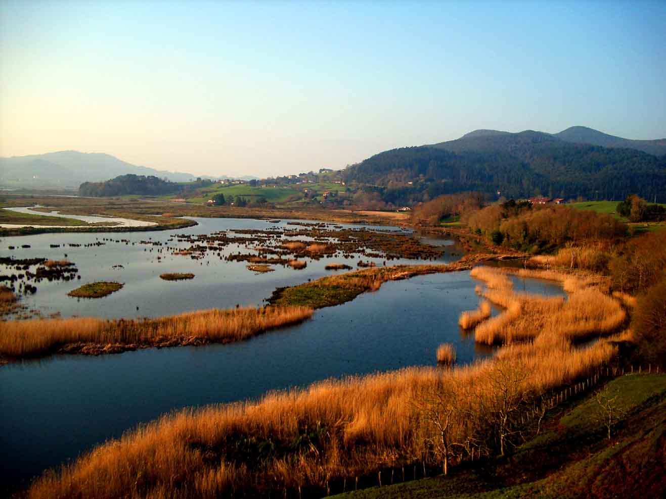 Urdaibai-bird-center